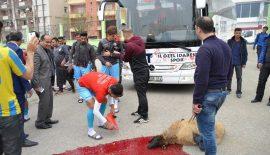 Siirtspor'a Otobüs Alındı