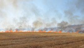 Vatandaşlara Anız Yangınlarına Karşı Duyarlılık Çağrısı