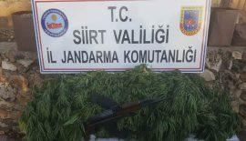 Emniyet Jandarma Uyuşturucuya Aman Vermiyor