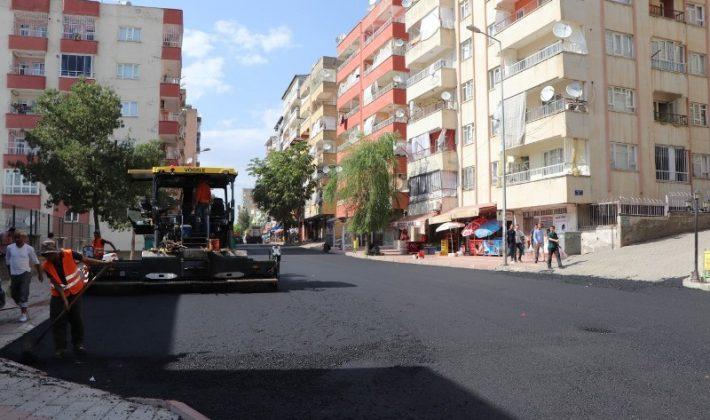 Siirt Kent Merkezindeki Yollar Asfaltla Örülüyor